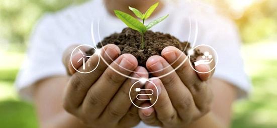 Educação e Sustentabilidade